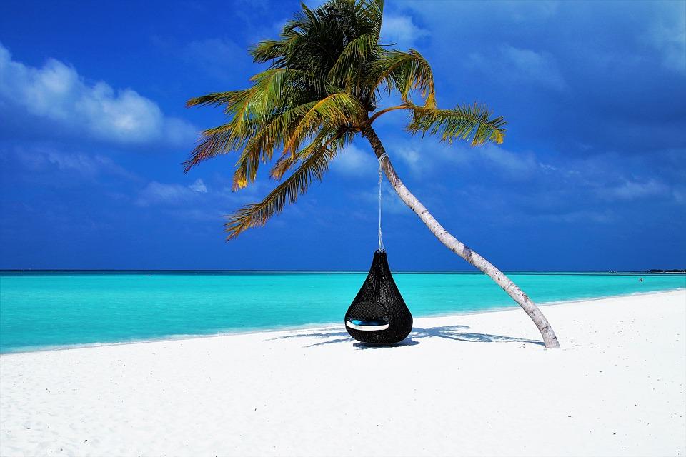 Hængestol på palme på strand