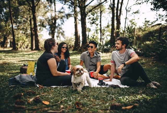 4 ting du skal huske af have med på din picnic